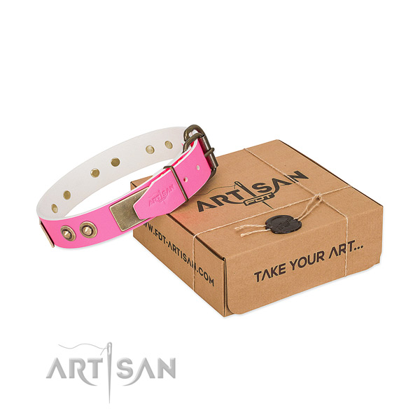 Rust resistant decorations on leather dog collar for your pet