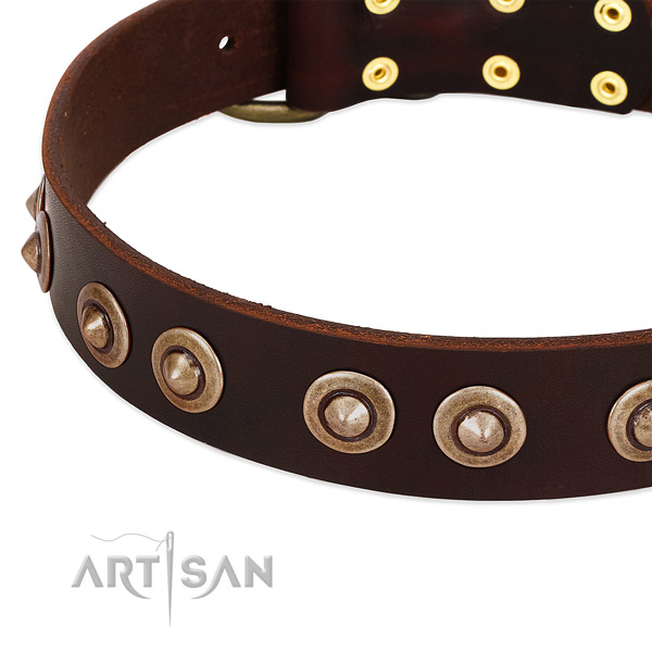 Corrosion resistant hardware on full grain leather dog collar for your four-legged friend