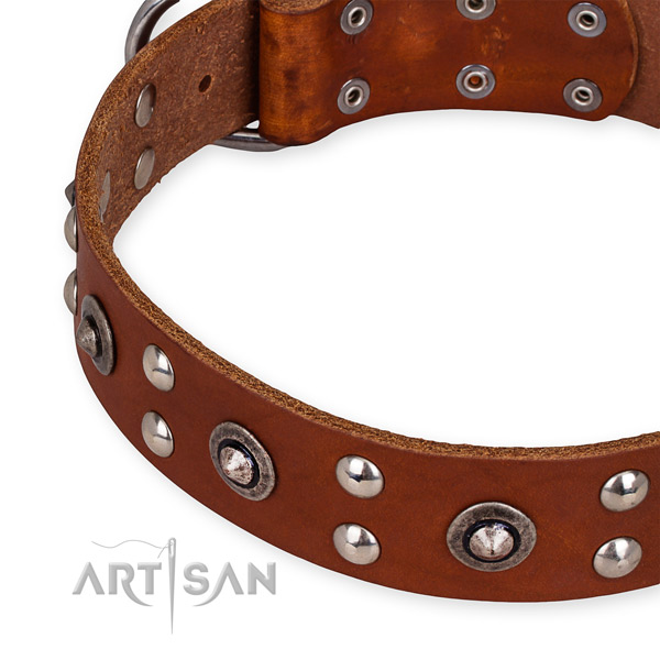 Genuine leather collar with rust-proof D-ring for your beautiful pet