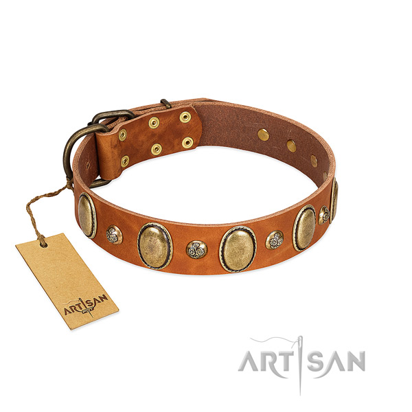 Full grain natural leather dog collar of top rate material with stunning adornments