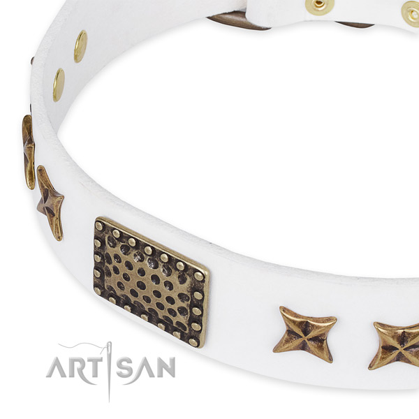 Full grain leather collar with corrosion resistant hardware for your stylish dog