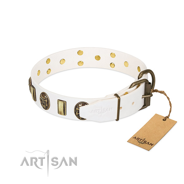 Rust-proof traditional buckle on full grain genuine leather collar for stylish walking your doggie