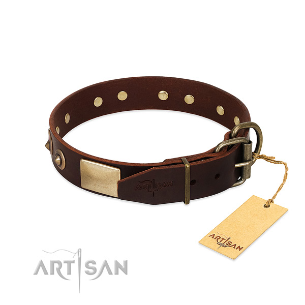 Rust-proof studs on easy wearing dog collar