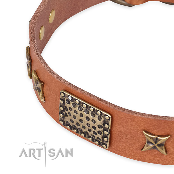Genuine leather collar with corrosion proof traditional buckle for your attractive doggie
