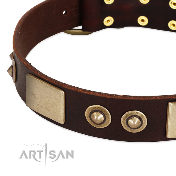 Reliable studs on full grain natural leather dog collar for your canine