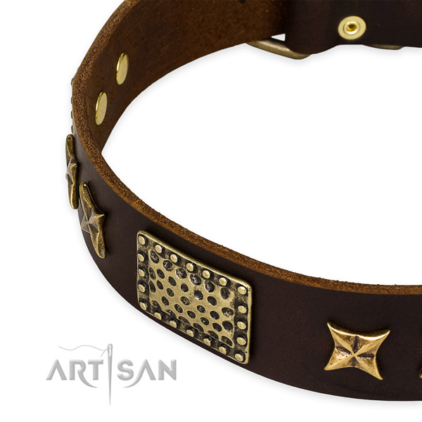 Genuine leather collar with corrosion resistant buckle for your lovely canine