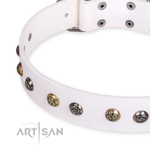 Full grain genuine leather dog collar with amazing strong adornments