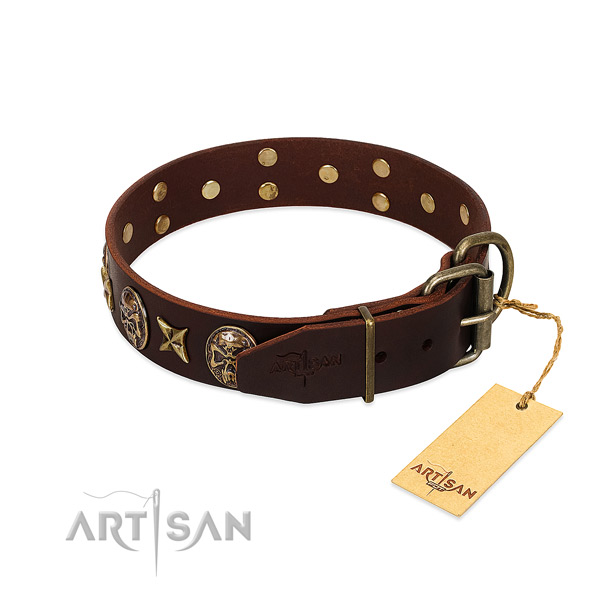 Genuine leather dog collar with strong buckle and studs