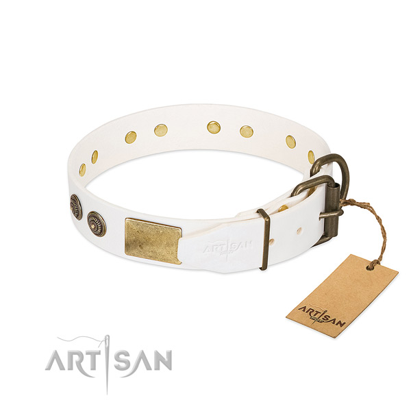 Corrosion resistant traditional buckle on genuine leather collar for stylish walking your four-legged friend
