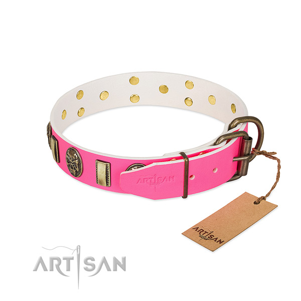 Durable buckle on full grain leather dog collar for your four-legged friend