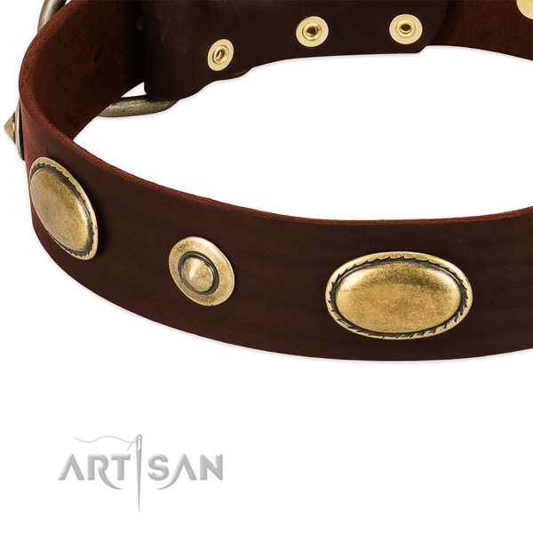 Strong embellishments on natural leather dog collar for your dog