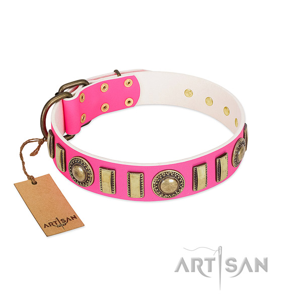 Extraordinary genuine leather dog collar with corrosion resistant hardware