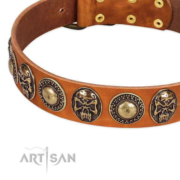 Rust-proof decorations on genuine leather dog collar for your four-legged friend