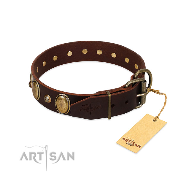 Strong fittings on leather collar for basic training your four-legged friend