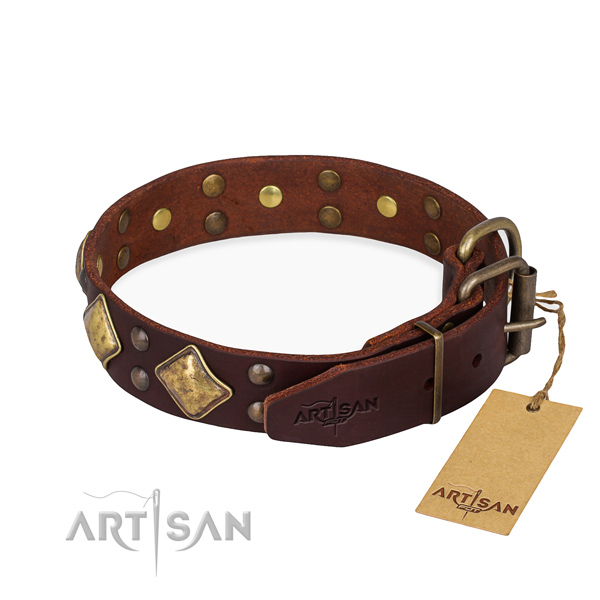 Full grain leather dog collar with amazing corrosion resistant decorations