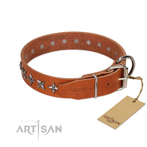 Walking studded dog collar of durable natural leather