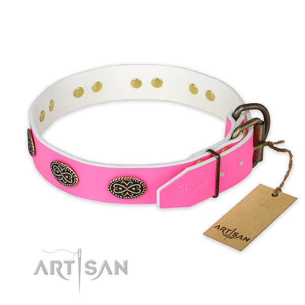 Rust resistant traditional buckle on daily use dog collar