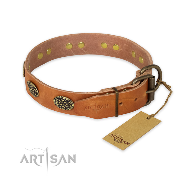 Reliable hardware on full grain natural leather collar for fancy walking your dog