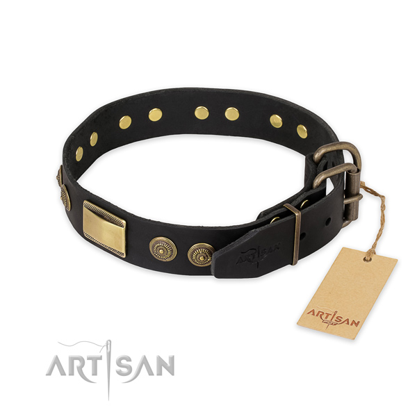 Durable fittings on leather collar for fancy walking your four-legged friend