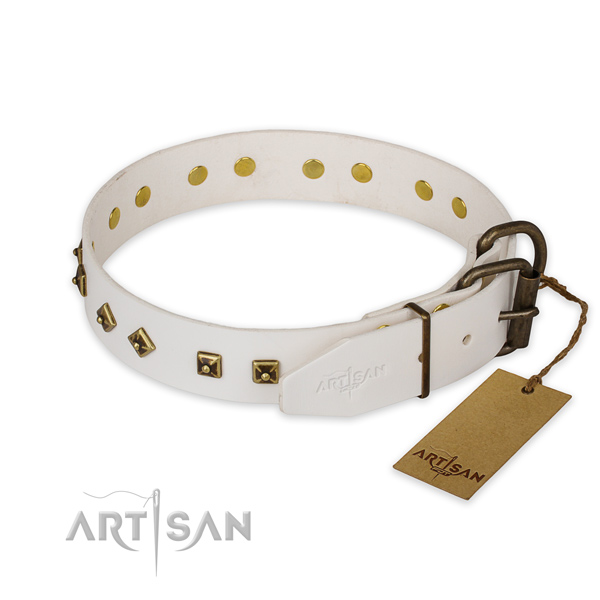 Durable traditional buckle on full grain leather collar for everyday walking your dog