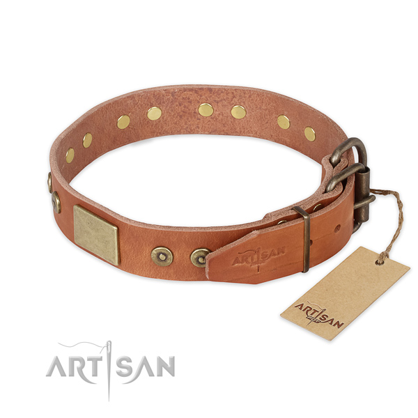 Durable D-ring on leather collar for stylish walking your dog