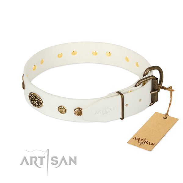 Strong adornments on full grain natural leather dog collar for your pet