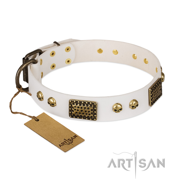 Strong decorations on walking dog collar