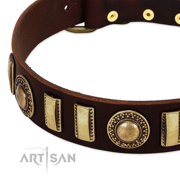 High quality full grain leather dog collar with durable buckle