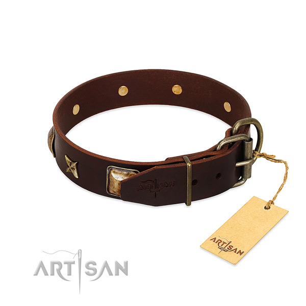Full grain natural leather dog collar with strong traditional buckle and studs