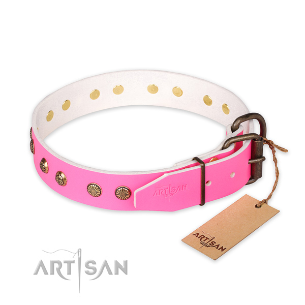Reliable D-ring on leather collar for your attractive doggie