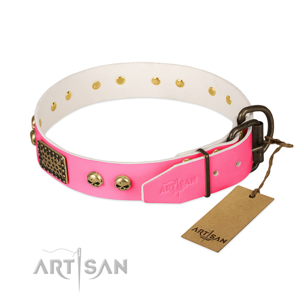 Durable buckle on everyday walking dog collar