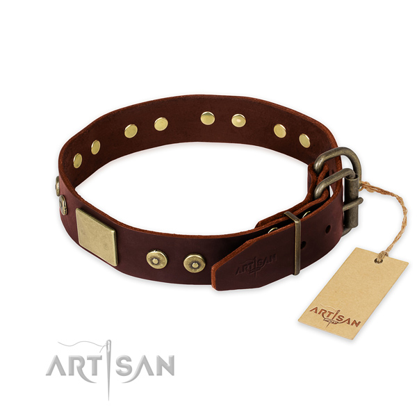 Rust resistant fittings on daily walking dog collar