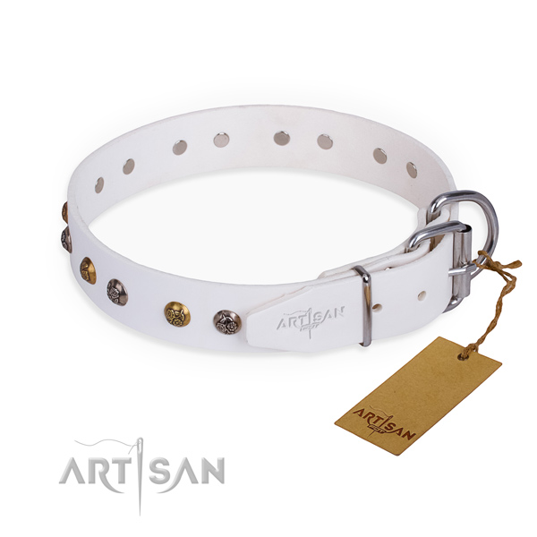 Genuine leather dog collar with stunning corrosion proof decorations