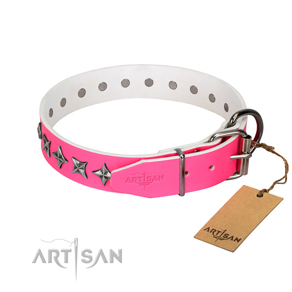 Finest quality natural leather dog collar with significant adornments