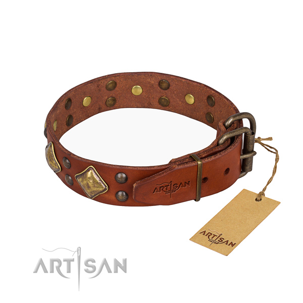 Full grain leather dog collar with stylish design strong embellishments