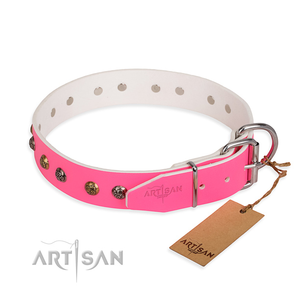 Genuine leather dog collar with unusual reliable embellishments