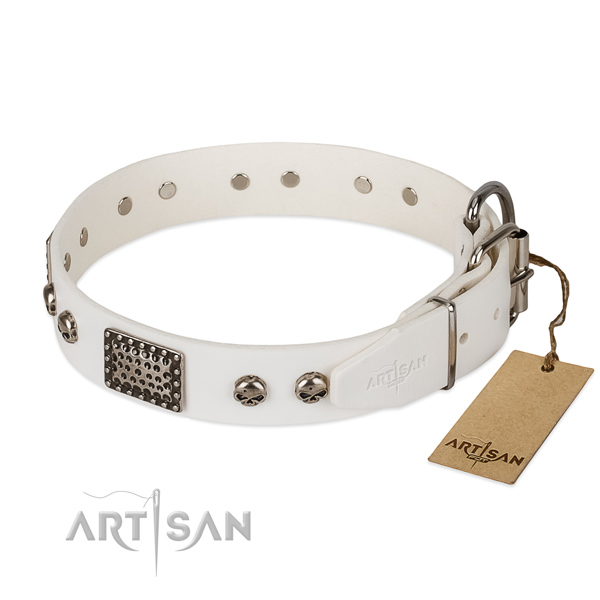 Strong adornments on easy wearing dog collar