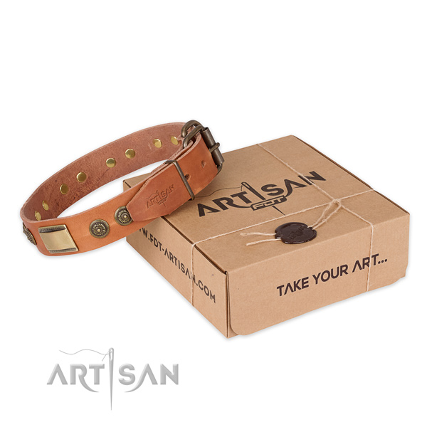 Reliable hardware on full grain genuine leather dog collar for basic training