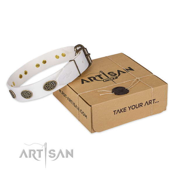 Reliable buckle on genuine leather collar for your stylish doggie