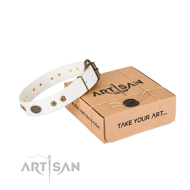 Strong embellishments on natural leather dog collar for your doggie
