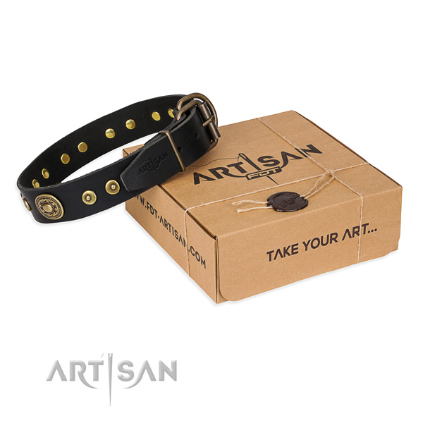 Full grain natural leather dog collar made of best quality material with strong fittings