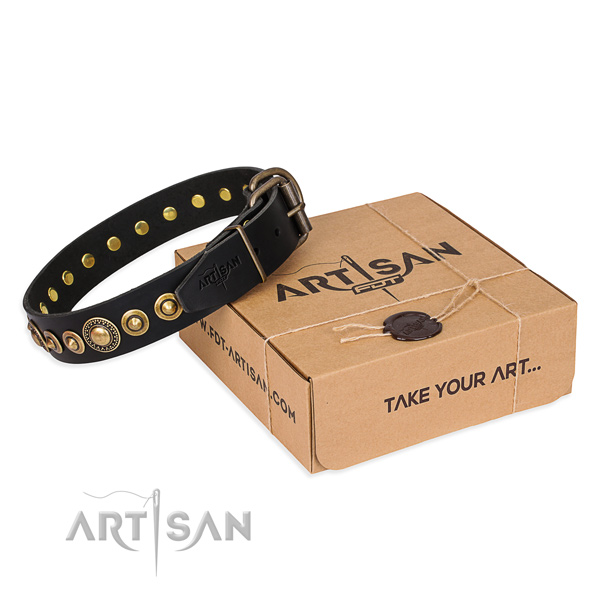 Top notch genuine leather dog collar handmade for daily use