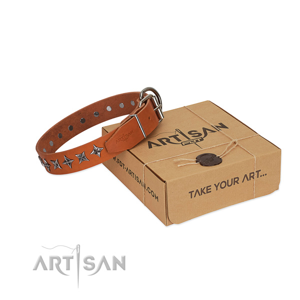 Comfortable wearing dog collar of high quality leather with decorations