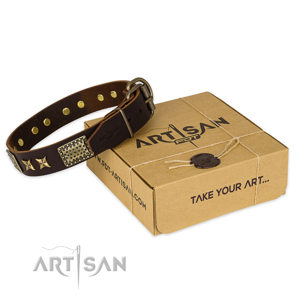 Corrosion proof hardware on leather collar for your beautiful canine