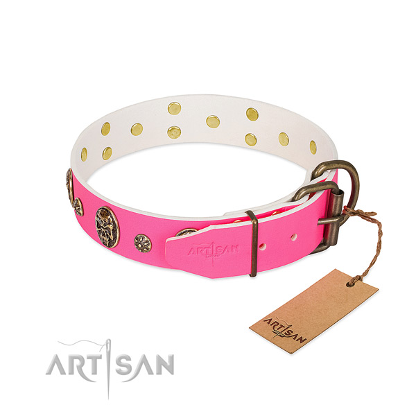 Durable buckle on full grain genuine leather collar for walking your four-legged friend