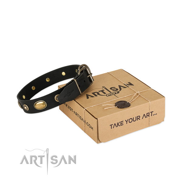Reliable decorations on natural leather dog collar for your pet