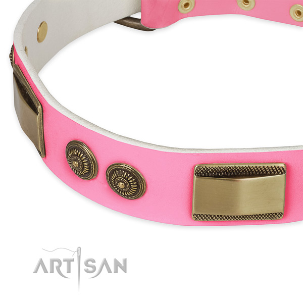 Full grain leather dog collar with embellishments for stylish walking