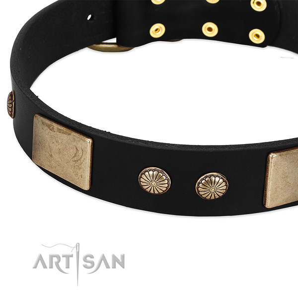 Full grain genuine leather dog collar with studs for walking