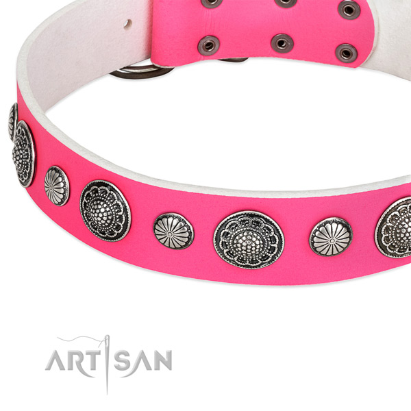 Leather collar with corrosion proof traditional buckle for your stylish doggie