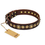 """Ancient Warrior"" FDT Artisan Fancy Leather dog Collar with Old-Bronze Plated Decorations"